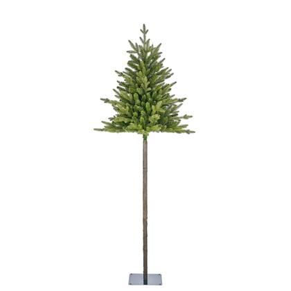 Black Box Trees Torrey Kerstboom H 215 cm