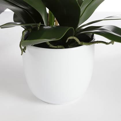 Mica Decorations Phalaenopsis Kunstplant In Bloempot Paars Kopen Shop Bij Fonq